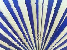 Azul e branco Imagens de Stock