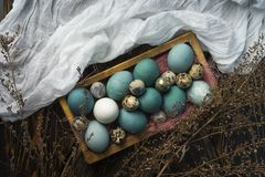 Azul, e ovos do branco e da galinha e ovos de codorniz em retro de madeira Foto de Stock
