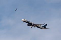 Azul linii lotniczych samolot Zdjęcie Royalty Free