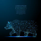 Azul poli do wireframe do urso baixo Fotos de Stock