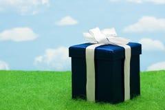 Azul presente Foto de archivo libre de regalías