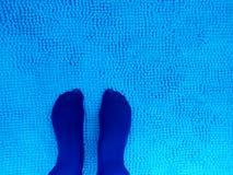 Azul real en la turquesa Imagen de archivo libre de regalías