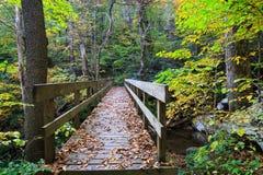 Azul Ridge Mountains North Carolina da ponte de madeira fotografia de stock