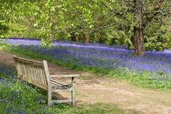 Azul tranquilo Fotos de Stock Royalty Free