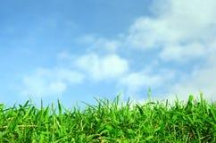 Azul verde do campo e de céu com nuvem branca Foto de Stock Royalty Free