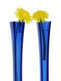 Azul y amarillo Fotografía de archivo libre de regalías