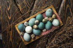 Azul, y huevos del blanco y del pollo y huevos de codornices en retro de madera Fotos de archivo libres de regalías