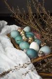 Azul, y huevos del blanco y del pollo y huevos de codornices en retro de madera Imagen de archivo libre de regalías
