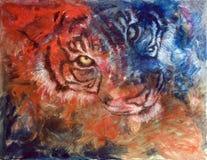 Azul y rojo del tigre Fotografía de archivo libre de regalías