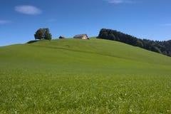 Azul y verde foto de archivo libre de regalías