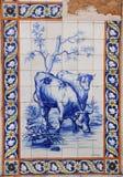 Azulejo Imagenes de archivo