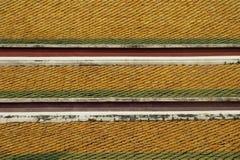 Azulejos de azotea de un templo tailandés imagen de archivo libre de regalías