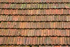 Azulejos de azotea viejos Fotos de archivo