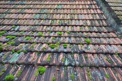 Azulejos de azotea viejos Imagen de archivo