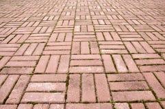 Azulejos del pavimento Fotos de archivo libres de regalías