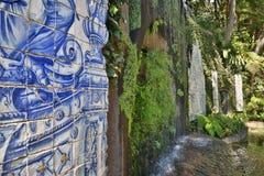 Azulejos en jardín tropical en Funchal Madeira, Portugal imagen de archivo