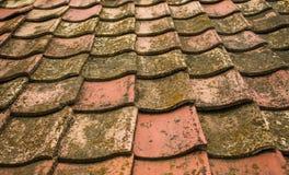 Azulejos viejos de la arcilla El tejado de la casa vieja de la casa del ` de los padres foto de archivo