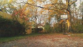 Azules del baloncesto Imágenes de archivo libres de regalías