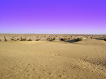 Azules del desierto fotos de archivo