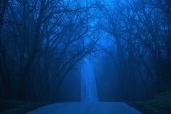 Azules del invierno Imágenes de archivo libres de regalías