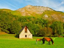 AZUN-dal i den höga franskan Pyrenees Royaltyfri Bild