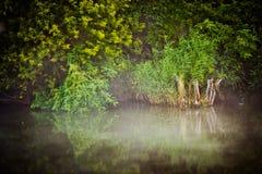 Azur des Teichs Lizenzfreie Stockbilder