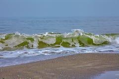 Azur våg på vattenkanten arkivfoto