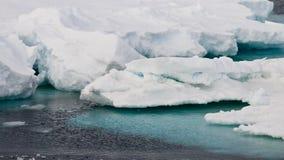 Azurblaues Wasser und weiße Eisberge Stockbild