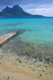 azure воды лагуны Стоковое Фото