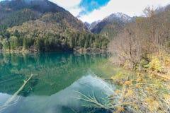 azure озеро Jiuzhaigou Valley считало ЮНЕСКО как место всемирного наследия и запас биосферы мира - Китай Стоковое Изображение RF