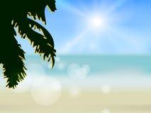 Azure beach Stock Photos