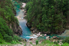 Azure clear river canyon and green forest, nature landscape Royalty Free Stock Images