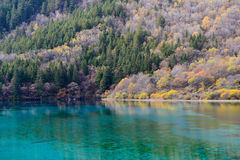 Azure lake. Jiuzhaigou Valley was recognize by UNESCO as a World Heritage Site and a World Biosphere Reserve - China Stock Photo