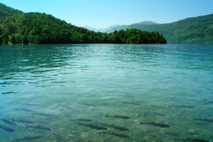 Azure lake Stock Photography