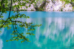 Azure lake. In a nature reserve Royalty Free Stock Images