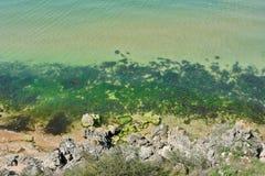 Azure sea. Stock Images