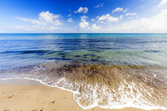 Azure Sea Stock Image