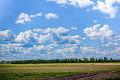 Azure sky with white clouds and green field Royalty Free Stock Images