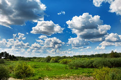 Azure sky with white clouds. Green field with fresh grass. Perspective view stock photography