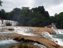 Azure Waterfalls brillante del Agua Azul Foto de archivo libre de regalías