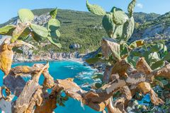 Aegean Sea, Skiathos, Greece. landscape. Azure waters of the aegean sea on the island of Skiathos, Greece. Rocky shores royalty free stock photography