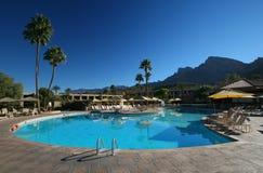 Azuurblauw blauw zwembad met palm Royalty-vrije Stock Foto's