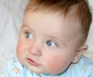 Azzurri di bambino Fotografia Stock Libera da Diritti