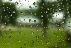 Azzurri di giorno piovoso Fotografia Stock