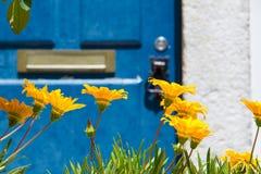 Azzurro e colore giallo Fotografie Stock