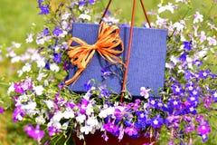 Azzurro presente Immagini Stock