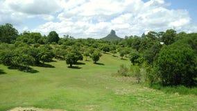 Bâti Coonowrin et montagnes de serre de verger de mangue photo stock