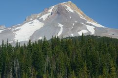 Bâti Hood Above The Timberline Images stock