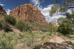 Bâti majestueux, traînée et arbres Zion National Park Utah photos stock