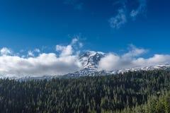 Bâti nuageux Rainier Forest Below image libre de droits